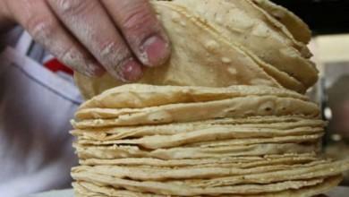No habrá aumento al precio de la tortilla y gasolina en enero: AMLO